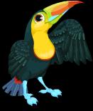 Keel billed toucan static