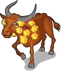 Thai buffalo static