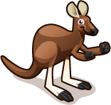 Kangaroo single