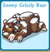 Snowy grizzly bear card
