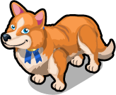 Welsh Corgi single