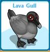 Lava gull card