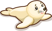 Harp Seal single