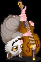 Jass bass opossum single
