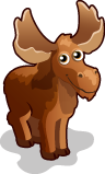 Moose single