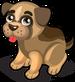 Rescue Puppy single