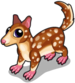 Bronze quoll single