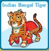 Indian bengal tiger card