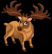 Irish elk single