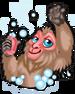 Snow monkey single