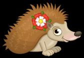 Tudor rose hedgehog single