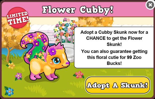 Cubby skunk flower modal