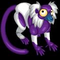Black & white ruffed lemur static