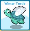 Winter turtle card