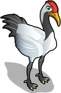 Red Crowned Crane single