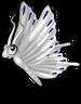 White butterfly single