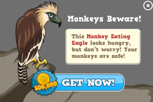 Monkey eating eagle modal