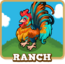 Store Ranch