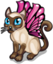 Siamese butterfly cat single