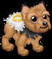 Ring bearer puppy single