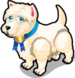 West Highland White Terrier single