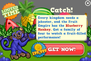 Blueberry monkey modal