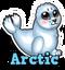 Arctic hud