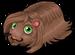 Peruvian guinea pig single