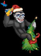 New york gorilla an