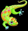 Gold dust gecko static