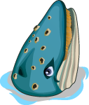 File:Blue Whale single.png