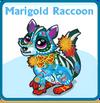Marigold raccoon card