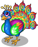 Swirl peacock static