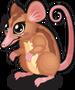 Honey possum single