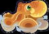 Common Octopus single