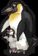 Emperor penguin single
