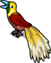 Bird of paradise single