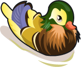 File:Perching Duck single.png
