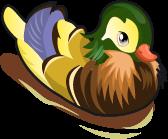 Perching Duck single