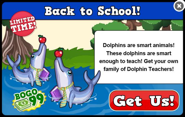 Teacher dolphin modal