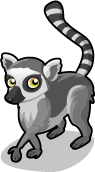 Lemur single