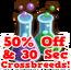 Mangrove crossbreed sale hud