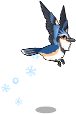 Snowflake blue jay an