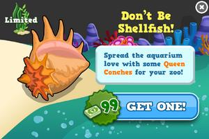 Queen conch modal
