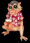 Luau monkey static