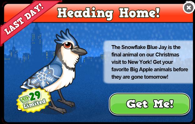 Snowflake blue jay modal