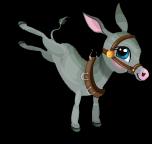 Cart donkey an