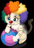 Clown Cat single