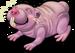 Naked mole rat single