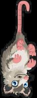 Opossum single